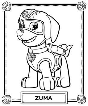 List Of Pinterest Patrulla Canina Fiesta Birthday Parties Images
