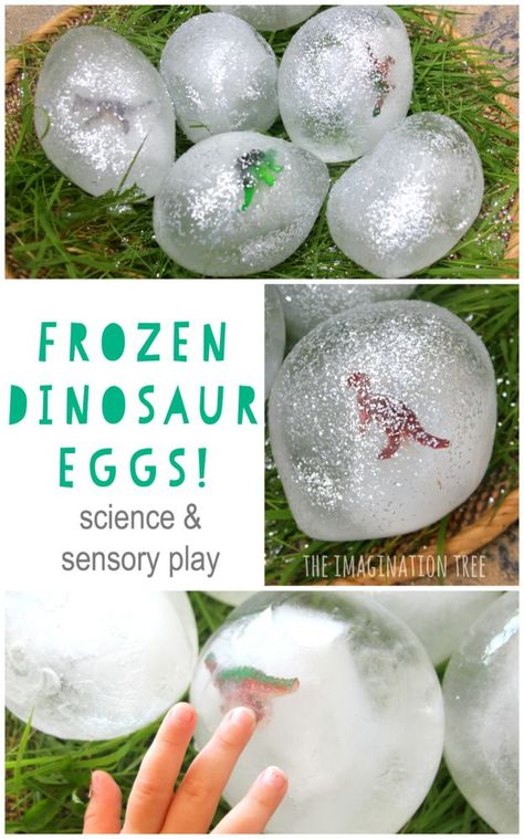 Dinosaur Eggs Sensory Play Wonderfully fun DIY frozen dinosaur eggs for sensory and imaginative play for kids!Wonderfully fun DIY frozen dinosaur eggs for sensory and imaginative play for kids! Dinosaurs Preschool, Dinosaur Activities, Science Activities, Toddler Activities, Dinosaur Projects, Water Play Activities, Childcare Activities, Kids Water Play, Nursery Activities Eyfs