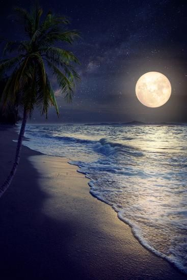 Beautiful Fantasy Tropical Beach with Milky Way Star in Night Skies, Full Moon - Retro Style ArtworBy jakkapan