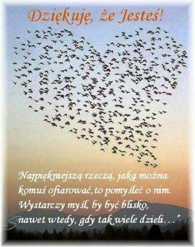 Pin By Anna Zebrowska On Podziekowania Quotes