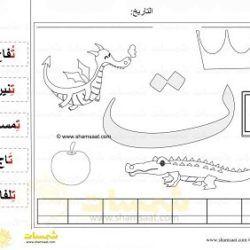 قص ولصق مطابقة كلمات حرف التاء مع الصور شمسات Alphabet Worksheets Learning Arabic Arabic Resources
