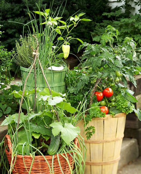 5 Diy Para Tu Terraza Jardinería En Macetas Jardineria Y