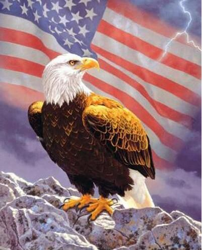 Freedom Eagle Square Diamond Painting Painting Kits Eagle Animals