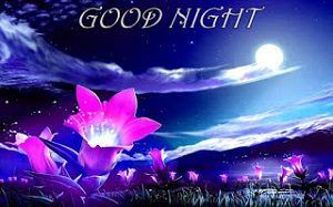 50 Gud Nyt New Pics Download For Good Night Latest Images Hd Good Night Wallpaper Good Night Photos Hd Good Night Image