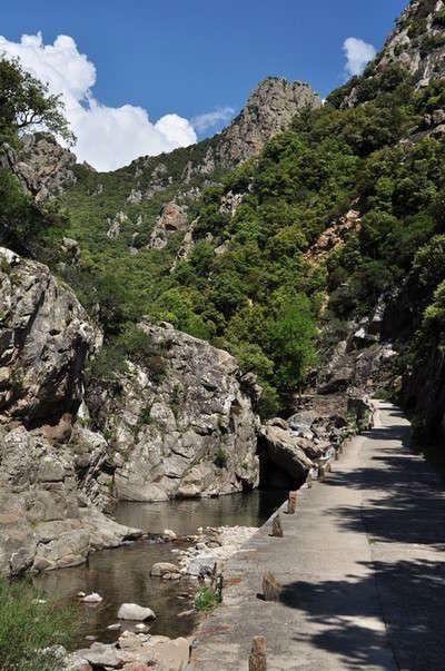 Le Parc Naturel Regional Du Haut Languedoc Parc Naturel Regional Parc Naturel Lieu Touristique