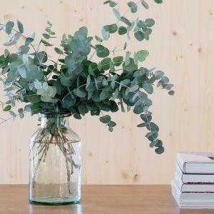 Eucalyptus In A Clear Vase Eucalyptus Clearvase Homedecor Eucalyptusinspo Vases Decor Plants Clear Vases