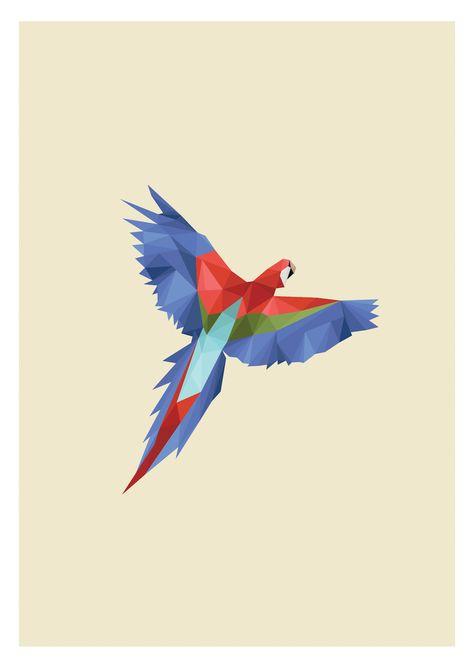 Brazilian Macaw Illustration