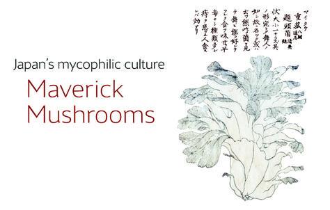 Article about Japan's mycophilic culture