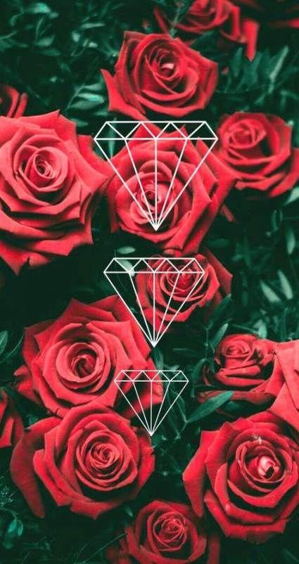 Wallpaper Flores Rosas Tumblr 48 Trendy Ideas Cute Wallpaper Backgrounds Tumblr Wallpaper Rose Wallpaper