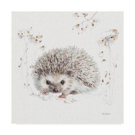 Animal Deco Prints on Canvas Hedgehog Illustration Splash Watercolor Art  Framed