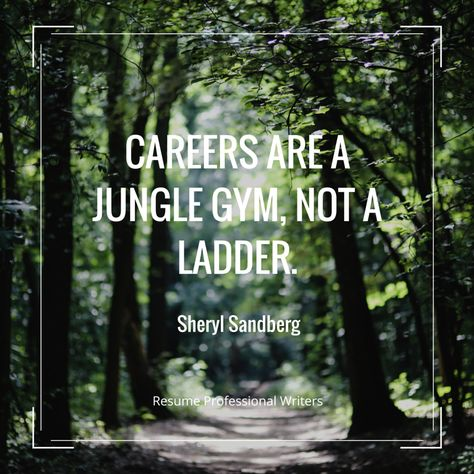 Careers are a jungle gym, not a ladder - the ladders resume