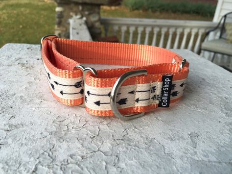 "Charlotte's Flying Arrows- 1"" Martingale Collar"