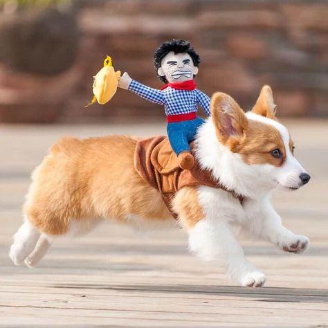 Pet Cowboy Rider Dog and Cat Costume - Riding Stripe Cowboy / Small