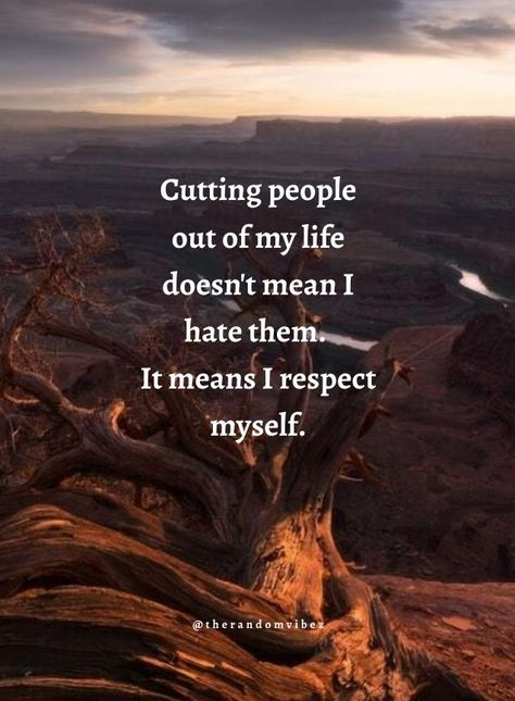 Cutting people out of my life doesn't mean I hate them. It means I respect myself. #Selfinspirationalquotes #Selfrespectquotes #Selfconfidencequotes #Inspiringquotes #Quotesaboutstrength #Selfworthquotes #Selfesteemquotes #Karmaquotes #Faithquotes #Selfaccpetancequotes #Kindnessquotes #Selflovequotes #Beingrealquotes #Beingindependentquotes #Motivationalquotes #Inspirationalquotes #Lifequotes #Dailyquotes #Beautifulquotes #Quoteoftheday #Quotetoinspireyou #Quotesandsayings #therandomvibez