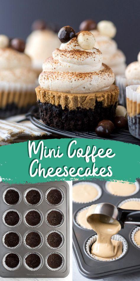 Mini Cheesecake Recipes, Coffee Cheesecake, Mini Desserts, Easy Desserts, Delicious Desserts, Dessert Recipes, Raspberry Cheesecake, Oreo Cheesecake Bites, Pumpkin Cheesecake