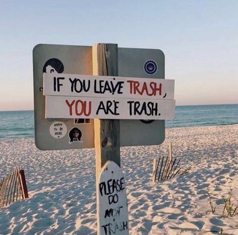 How to clean up a trashy beach