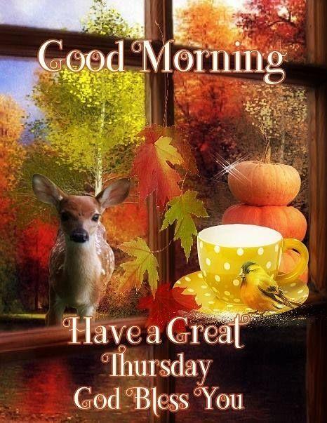 Good Morning Thursday Blessings Happy Thursday Morning Good Morning Thursday Good Thursday
