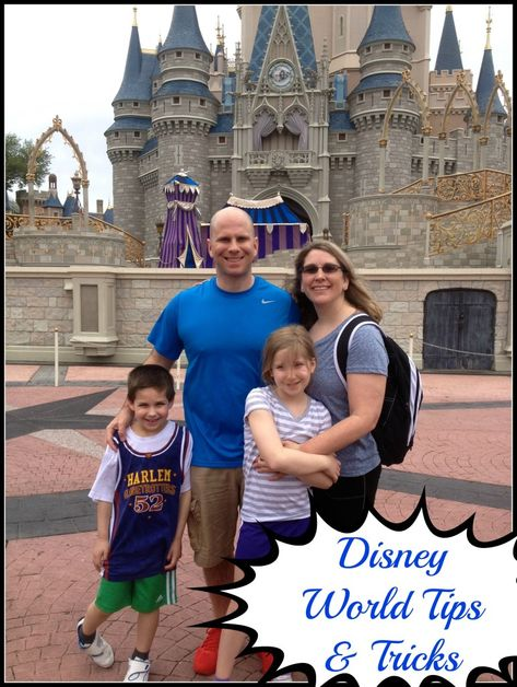 Disney World Tips and Tricks 2013 from Mama Luvs Books!