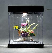 Dollhouse Miniature Artisan Tadpole in a Glass Jar by Philip Grenyer