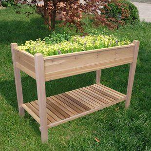Arlmont Co Zack 6 5 Ft X 2 Ft Wood Raised Garden Raised Garden Beds Cedar Raised Garden Garden Beds