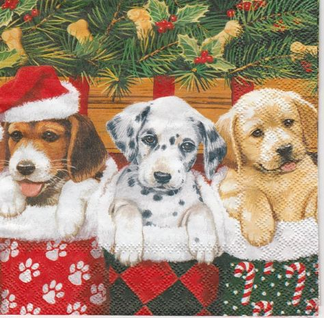 4 Single Paper Napkins for Decoupage Dog and Cats