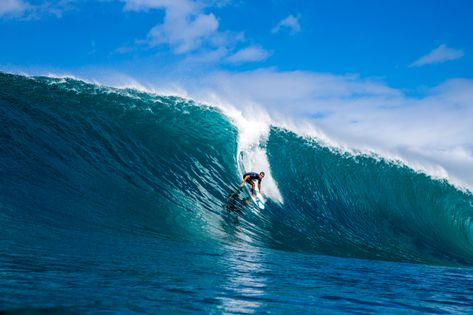 Surfing Articles:             Latest Surf News, Videos, & Photos at Surfline