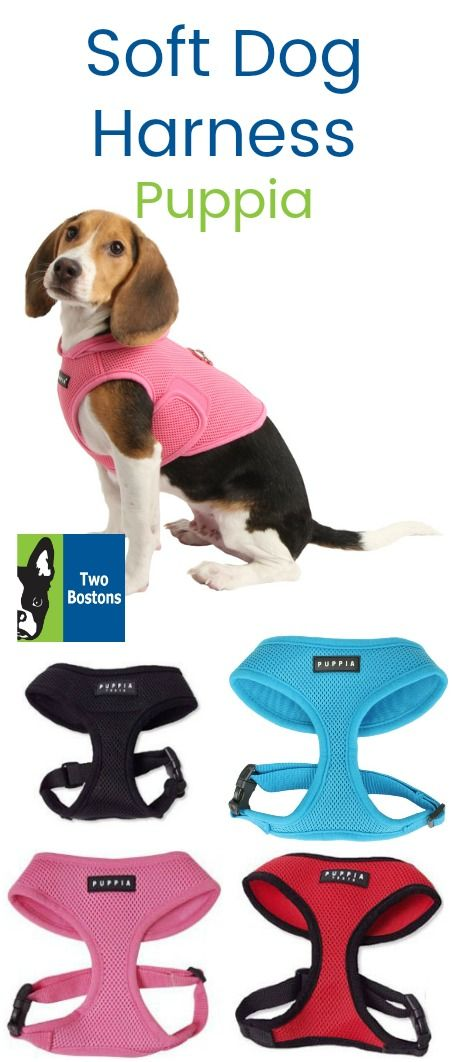 Sky Blue Soft Dog Harness By Puppia Dog Harness Dog Collars