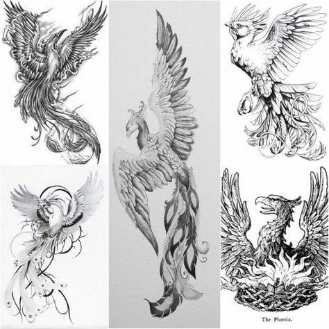 Wzór Tatuażu Feniks Monika Tatuaże