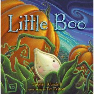 Little Boo by Stephen Wunderli, illustrated by Tim Zeltner,