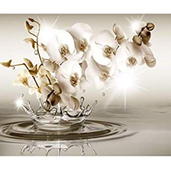 Decomonkey Fototapete Blumen Orchidee 250x175 Cm Xl Tapete Wandbild Wandbild Bild Fototapeten Tapeten Wandtapete Wandtapete 3d E Place Card Holders Decor Beige