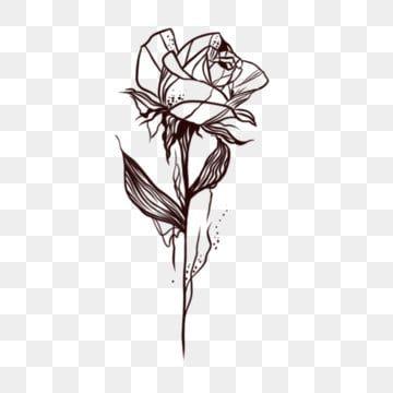 الوشم والنباتات والورود ومخطوطات الوشم الورد المرسومة وشم النباتات Png وملف Psd للتحميل مجانا Camera Tattoos Totem Tattoo American Tattoos