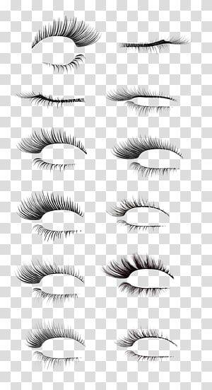Eyelash Eyelash Lashes Transparent Background Png Clipart Transparent Background Eye Illustration Watercolor Eyes