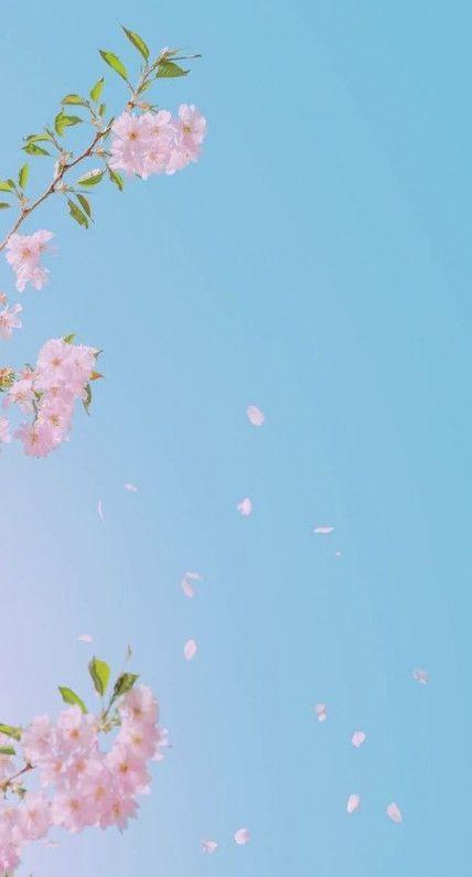 67 Ideas For Flowers Art Wallpaper Iphone Flowers Art