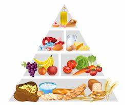 نتيجة بحث الصور عن الهرم الغذائي Food Pyramid Food Pyramid Kids Pyramids