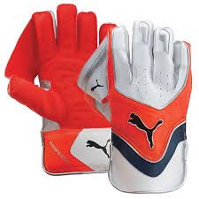 Image result for wicket keeping gloves | Gloves, Wicket