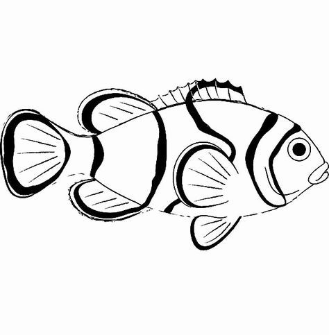Clown Fish Coloring Page New Clownfish Coloring Pages Download And Print Clownfish Wickedbabesblog Com In 2021 Fish Coloring Page Coloring Pages Clown Fish