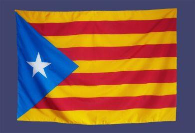 Cataluña Senyera Estelada Bandera Parche Bordado Coser o Hierro En