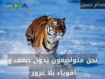 نحن متواضعون بدون ضعف و أقوياء بلا غرور صدام حسين Cat Stamp Stamp Collecting Save The Tiger