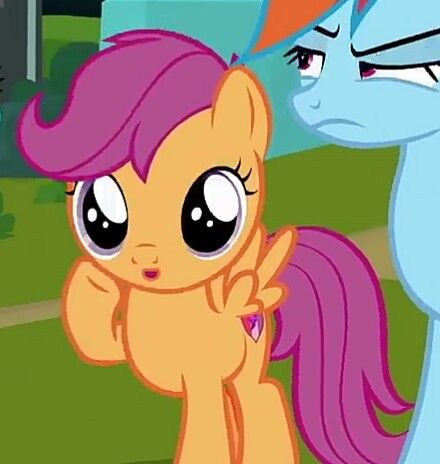 2069554 Cropped Cute Cutealoo Duo O Open Mouth Pegasus Rainbow Dash Safe Scootaloo Screencap The Washo Rainbow Dash My Little Pony Pictures Pony In generation 4, scootaloo and cheerilee have no indicated familial relationship, and cheerilee has a twin sister named cherry blossom. 2069554 cropped cute cutealoo duo