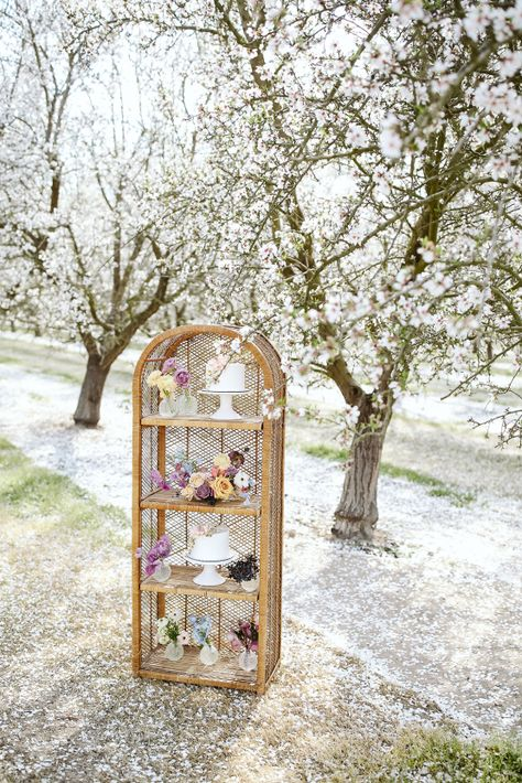 Whimsical Almond Orchard Blossom Wedding Inspiration – Playful Soul Photography 11  Blossoming orchards are the perfect backdrop for a nature-filled outdoor celebration.  #bridalmusings #bmloves #wedding #weddinginspo #weddinginspiration #blossom #orchard #outdoorwedding