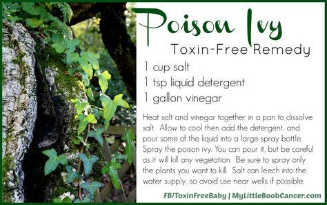 poisonivy 1024x642 Poison Ivy Natural Killer