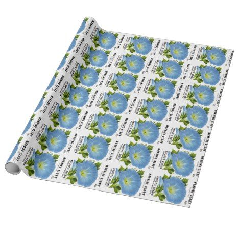 Morning Glory Vintage Seed Packet Wrapping Paper Zazzle Com