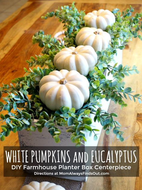 DIY Fall Decor: Wooden Box Centerpiece with Pumpkins and Eucalyptus DIY Farmhouse Decor: White Pumpkins and Eucalyptus Fall Centerpiece Ideas Always aspired to discover ways to knit, altho. Fall Home Decor, Autumn Home, Diy Autumn, Planter Box Centerpiece, Thanksgiving Centerpieces, Diy Thanksgiving, Fall Centerpiece Ideas, Pumpkin Centerpieces, Deco Floral