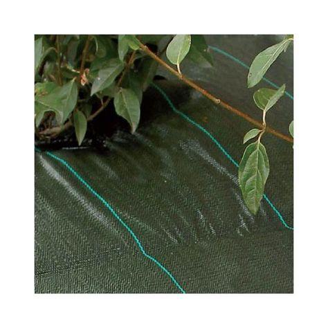Toile De Paillage Agrosol 1 25 M X 10 M Gamm Vert In 2020 Plant Leaves Garden Design Plants