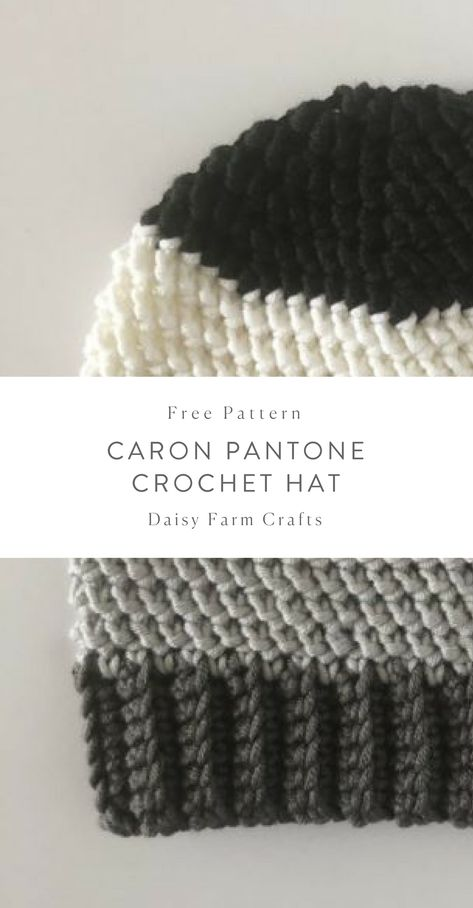 Free Pattern - Caron Pantone Crochet Hat #crochet   DIY   Pinterest ...