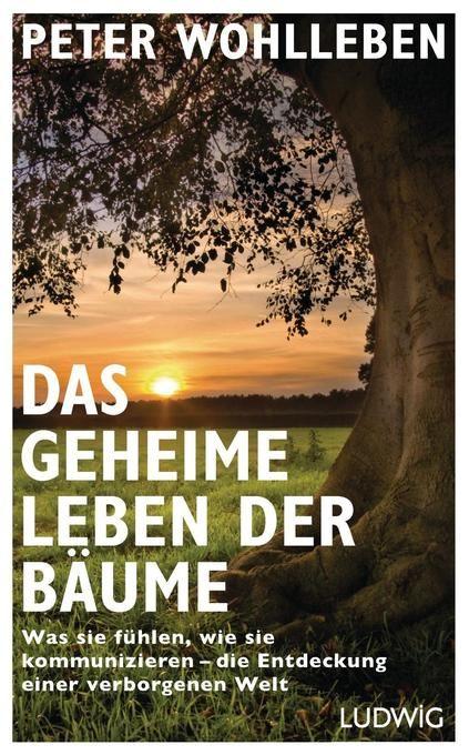 Das Geheime Leben Der Baume Geheim Peter Wohlleben Bucher