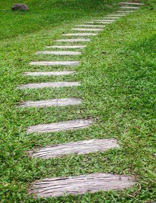 Wood Walkway In Grass Garden Wood Walkway Garden In The Woods Grasses Garden