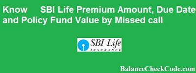 Know Sbi Life Insurance Policy Amount And Fund Value By Missed