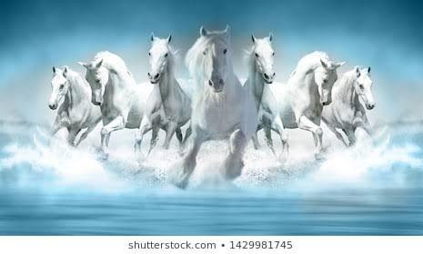 Seven Horse Hd Image Google Search Horse Wallpaper Horses Wall Art Pictures Full hd wallpaper 7 horse