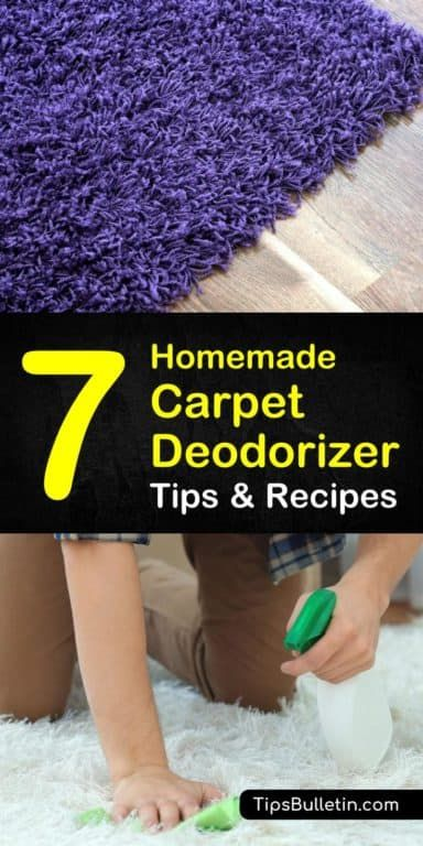 7 Fast Easy Carpet Deodorizers Anyone Can Make With Images